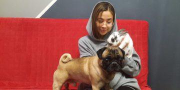 """""""Питомцы учат нас терпению, заботе, труду"""": в День домашних животных студенты ГУ рассказывают о своих любимцах"""